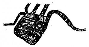 logo-mostriciattolo-image002